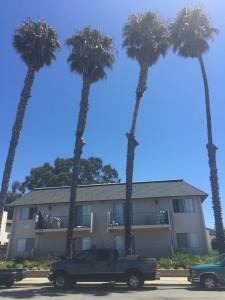 サンタバーバラ近郊のナイスな家